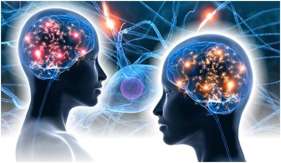 y el cerebro creo al hombre