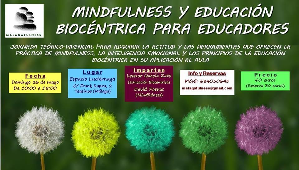 malaga mindulness educacion